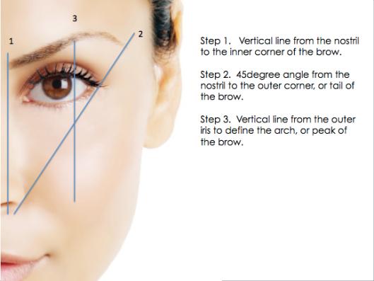 Eyebrow-shaping-chart-