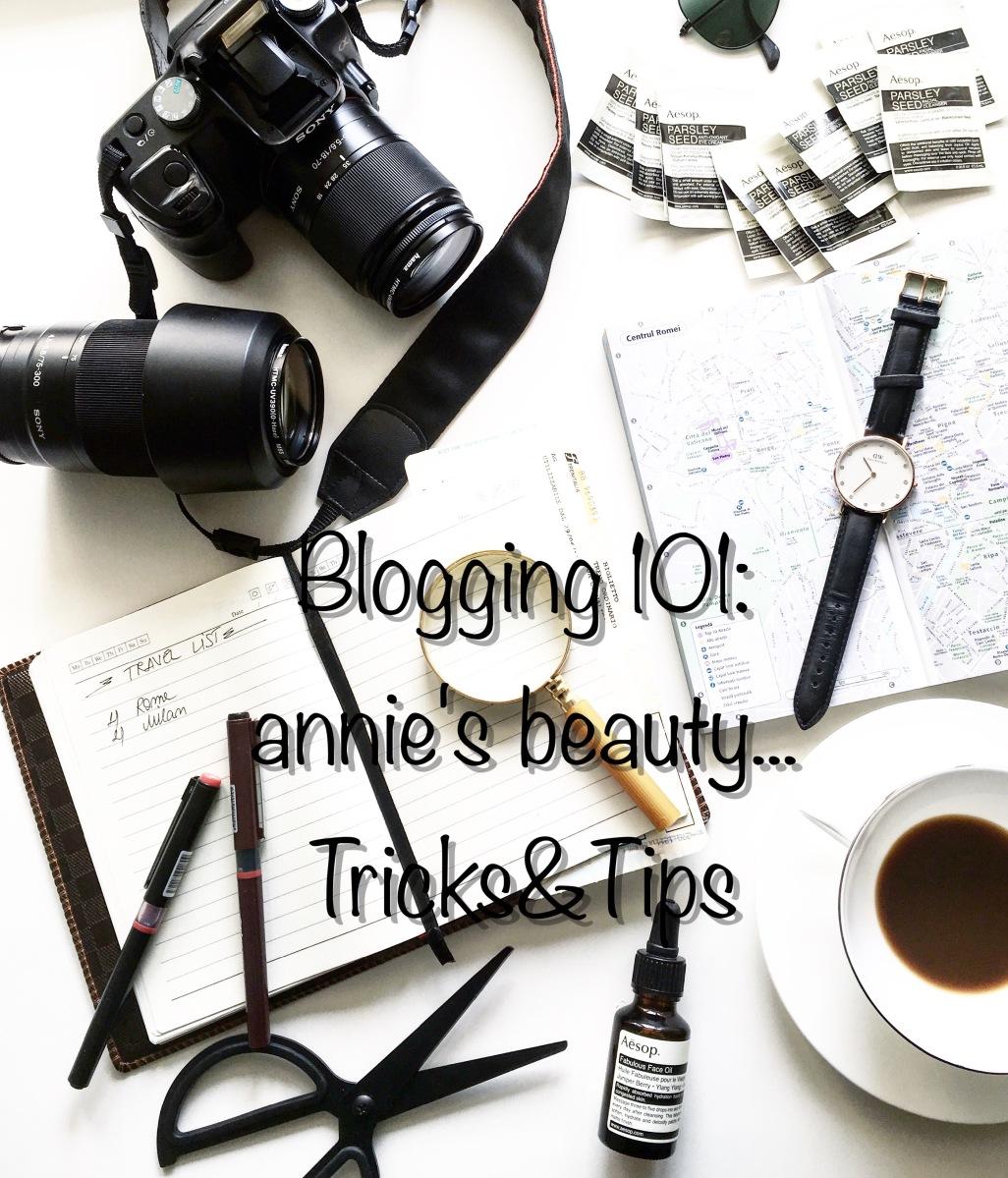 Blogging 101 - annie's beauty... Tricks & Tips